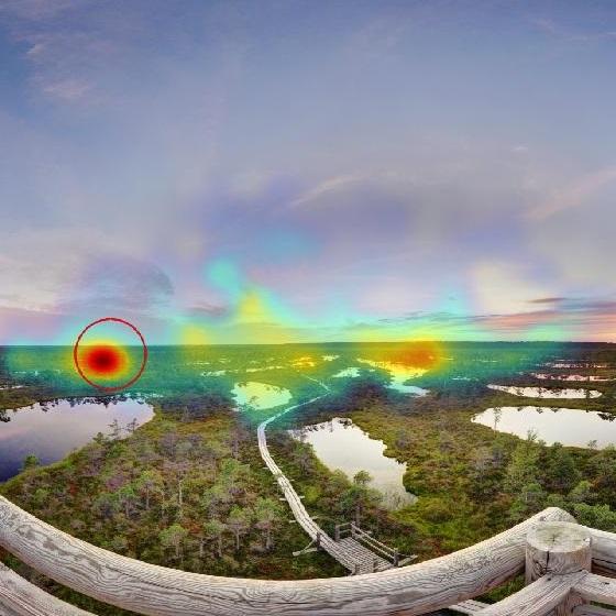 Gaze Guidance in Immersive Environments