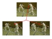 Robust Feature Matching in General Multi-Image Setups